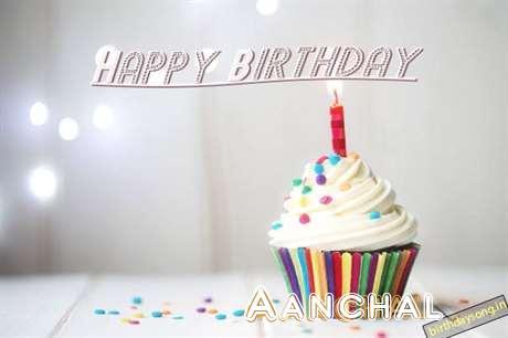 Aanchal Birthday Celebration