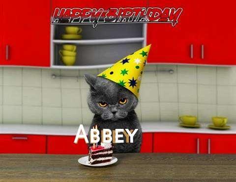 Happy Birthday Abbey