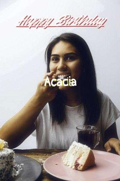 Happy Birthday to You Acacia