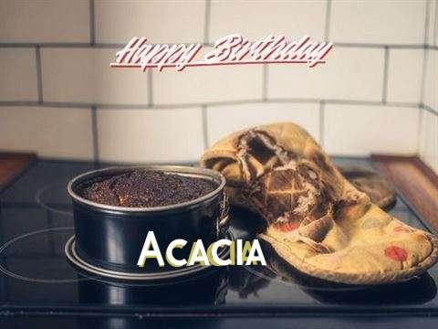 Acacia Cakes