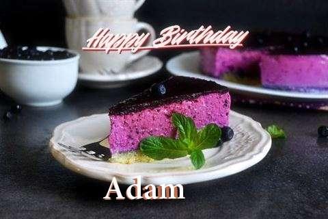 Adam Birthday Celebration