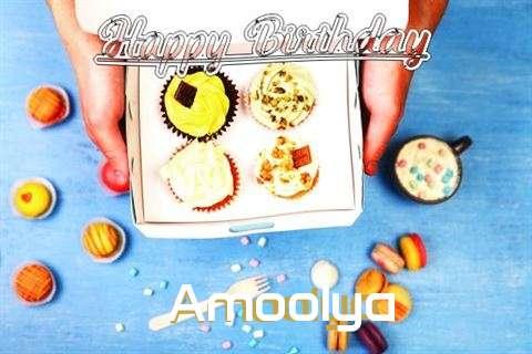 Amoolya Cakes