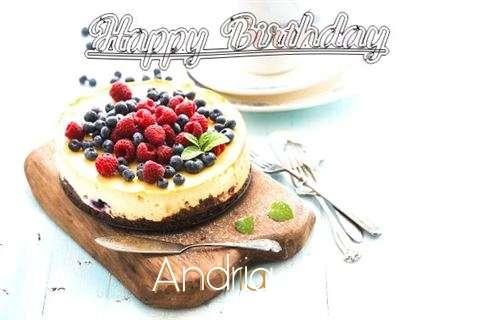 Happy Birthday Andria