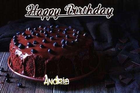 Happy Birthday Cake for Andria