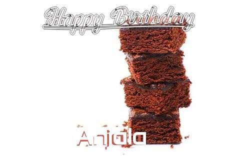 Anjala Birthday Celebration