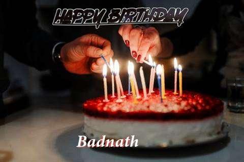 Badnath Cakes