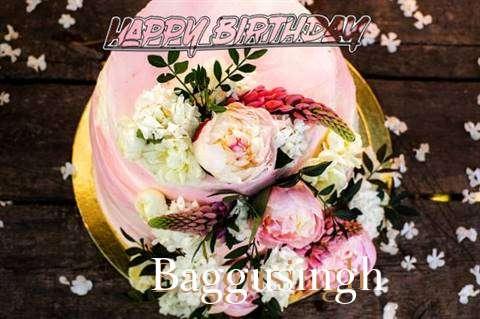 Baggusingh Birthday Celebration