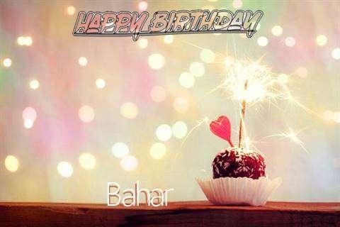 Bahar Birthday Celebration