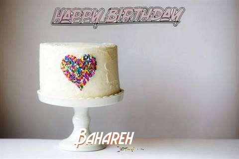 Bahareh Cakes