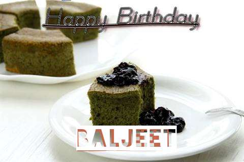 Baljeet Cakes