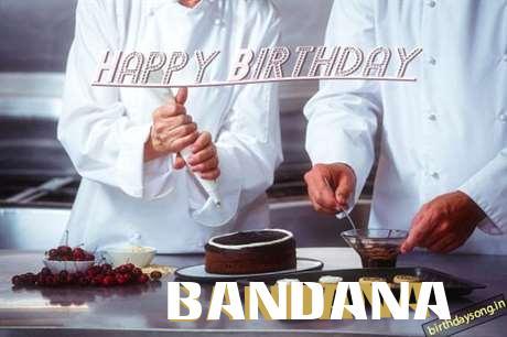 Bandana Birthday Celebration