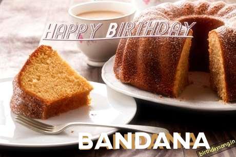 Happy Birthday to You Bandana