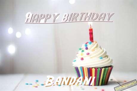 Bandani Birthday Celebration