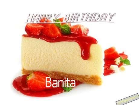Banita Cakes