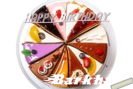 Barkha Cakes