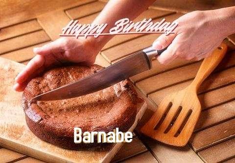 Happy Birthday Barnabe Cake Image