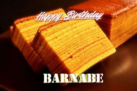Barnabe Birthday Celebration