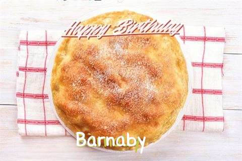 Barnaby Birthday Celebration
