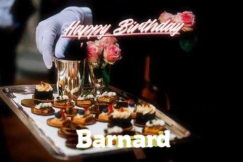 Happy Birthday Wishes for Barnard
