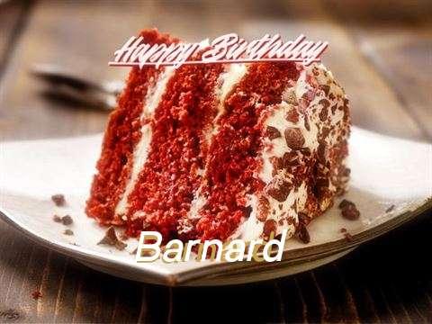 Happy Birthday to You Barnard