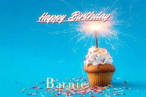 Happy Birthday Wishes for Barnie