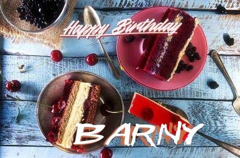 Barny Birthday Celebration