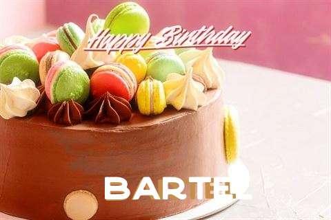 Happy Birthday Cake for Bartel