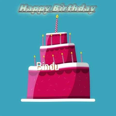 Wish Bindu