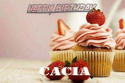 Wish Cacia