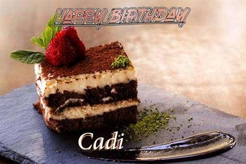 Cadi Cakes