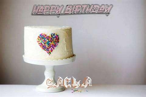 Caela Cakes