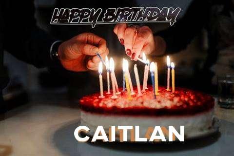 Caitlan Cakes