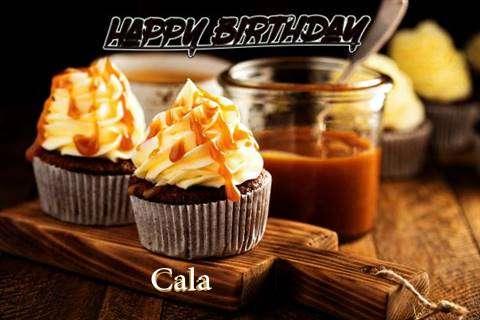Cala Birthday Celebration