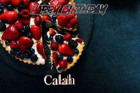 Calah Birthday Celebration