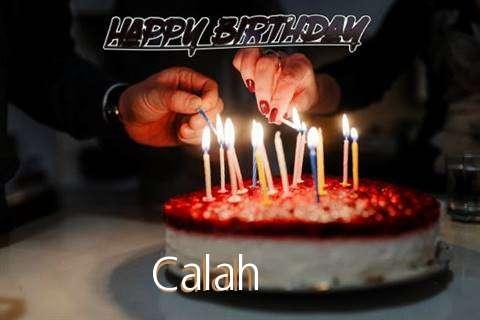 Calah Cakes