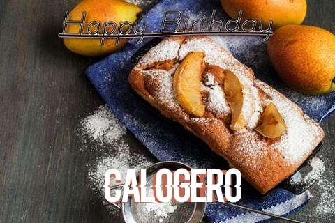 Wish Calogero