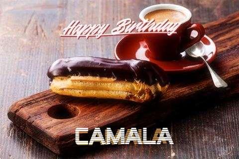 Happy Birthday Camala Cake Image