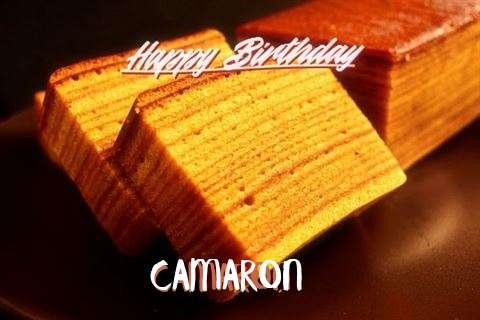 Camaron Birthday Celebration