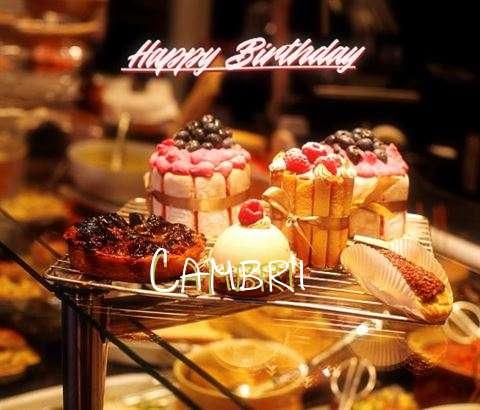 Cambri Birthday Celebration