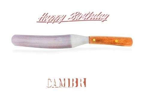 Wish Cambri