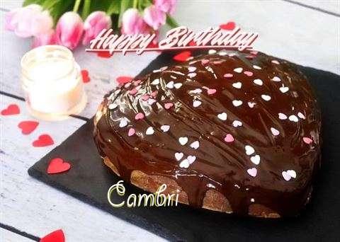 Happy Birthday Cake for Cambri