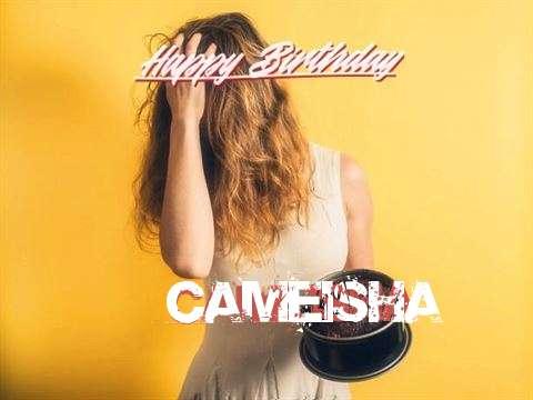 Cameisha Birthday Celebration