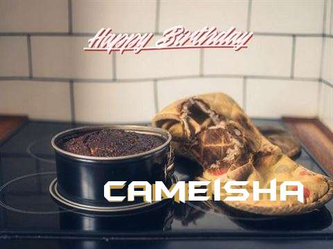 Cameisha Cakes