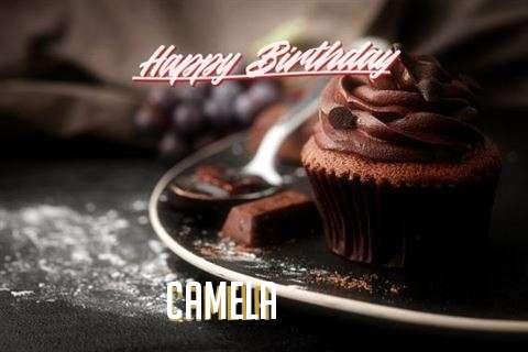 Happy Birthday Wishes for Camela