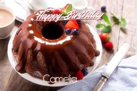 Happy Birthday Camelia Cake Image