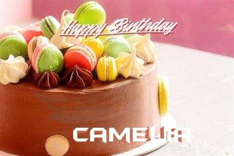 Happy Birthday Cake for Camelia