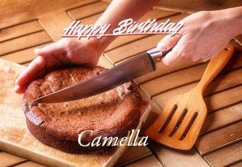 Happy Birthday Camella Cake Image