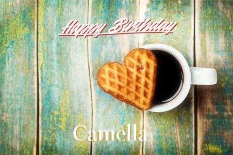 Wish Camella