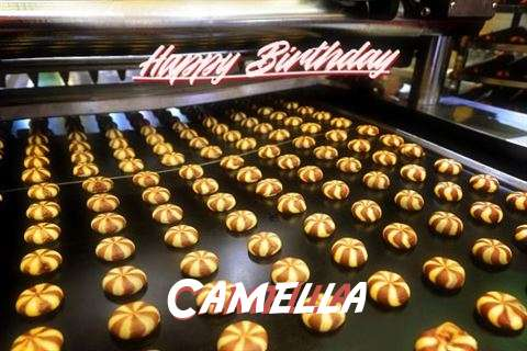 Happy Birthday Cake for Camella