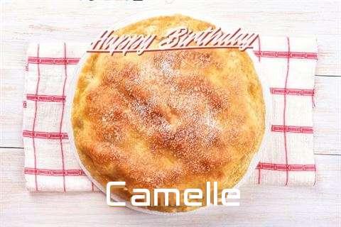 Camelle Birthday Celebration